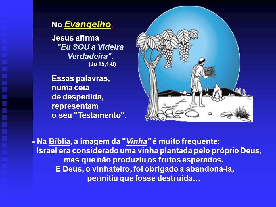 - Na Bíblia, a imagem da Vinha é muito freqüente: Israel era considerado uma vinha plantada pelo próprio Deus, mas que não produziu os frutos esperados.