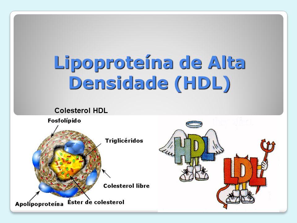 Lipoproteína de Alta Densidade (HDL) Funções Fisiológicas