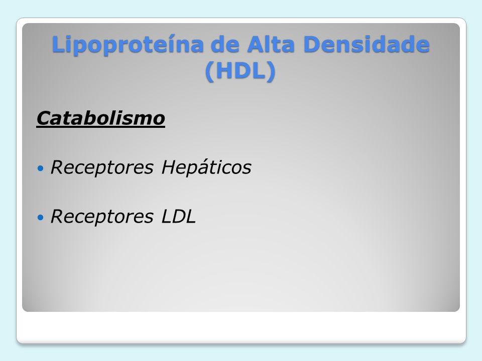 Lipoproteína de Alta Densidade (HDL) Catabolismo Receptores Hepáticos Receptores LDL