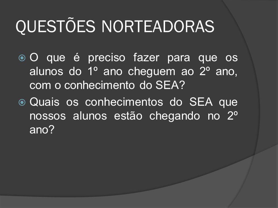 QUESTÕES NORTEADORAS  O que é preciso fazer para que os alunos do 1º ano cheguem ao 2º ano, com o conhecimento do SEA.
