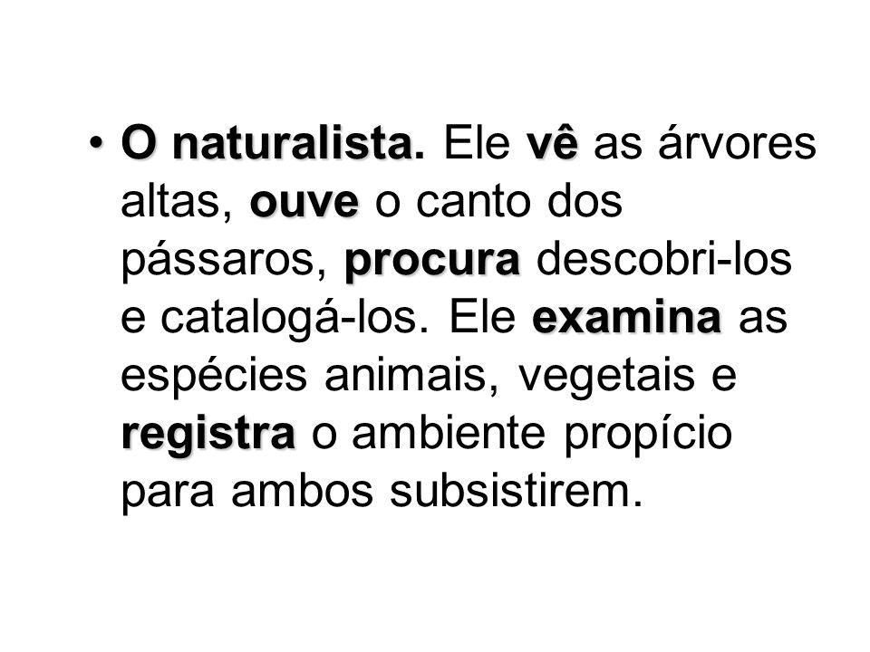 O naturalistavê ouve procura examina registraO naturalista.