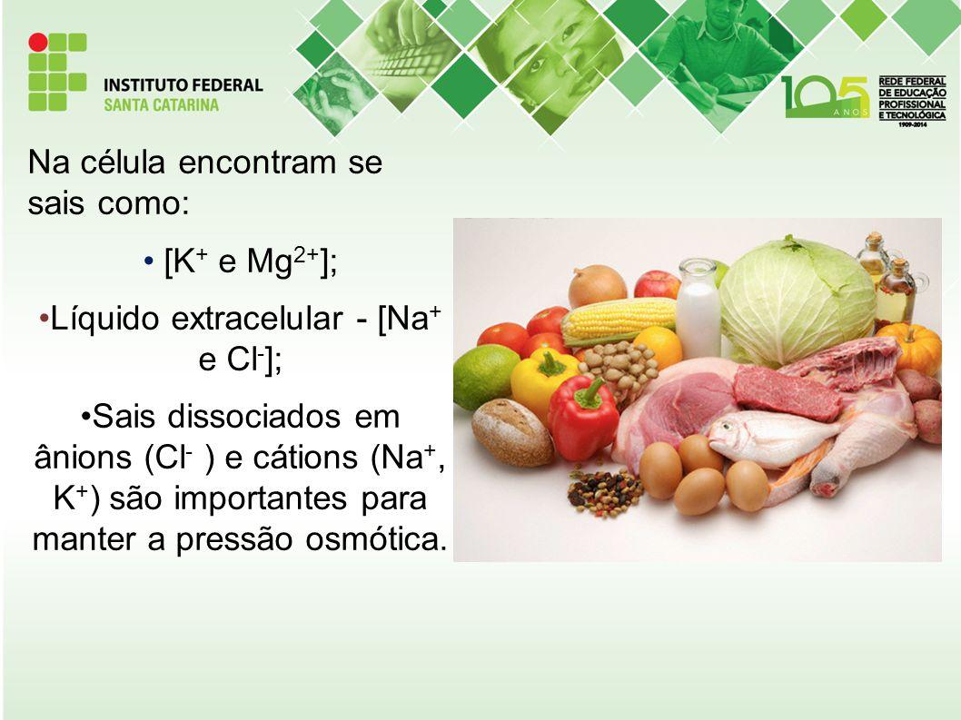 Na célula encontram se sais como: [K + e Mg 2+ ]; Líquido extracelular - [Na + e Cl - ]; Sais dissociados em ânions (Cl - ) e cátions (Na +, K + ) são