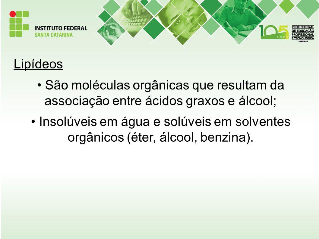 Lipídeos São moléculas orgânicas que resultam da associação entre ácidos graxos e álcool; Insolúveis em água e solúveis em solventes orgânicos (éter,