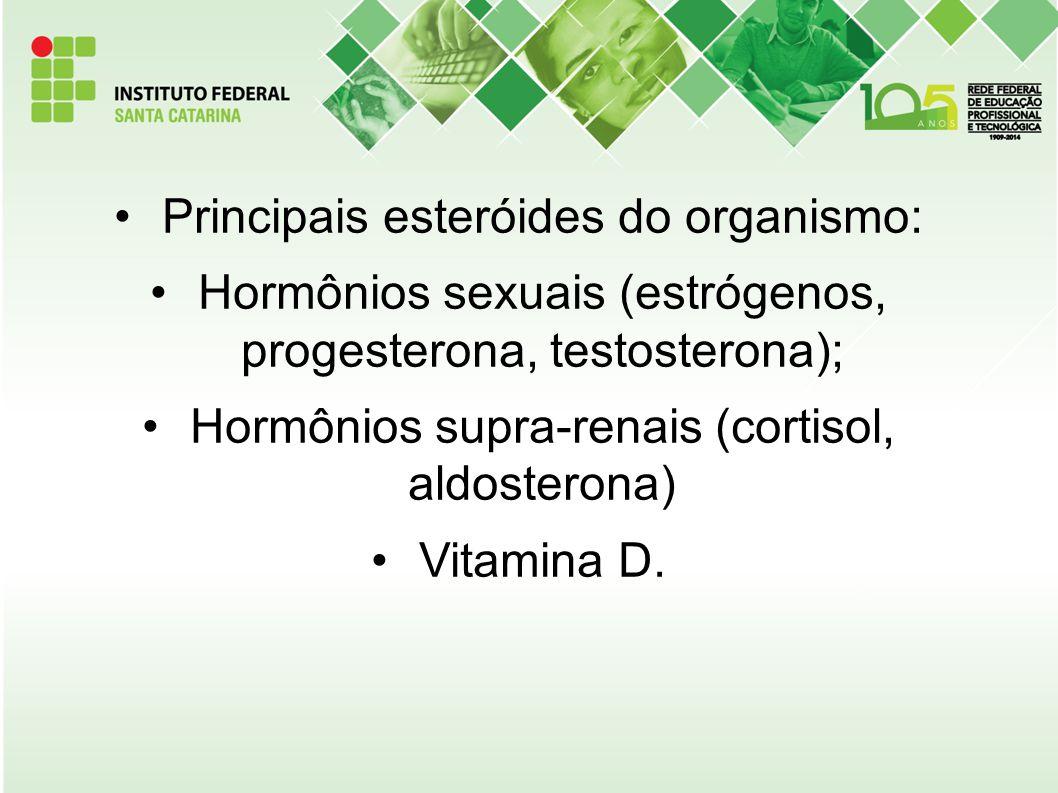 Principais esteróides do organismo: Hormônios sexuais (estrógenos, progesterona, testosterona); Hormônios supra-renais (cortisol, aldosterona) Vitamin
