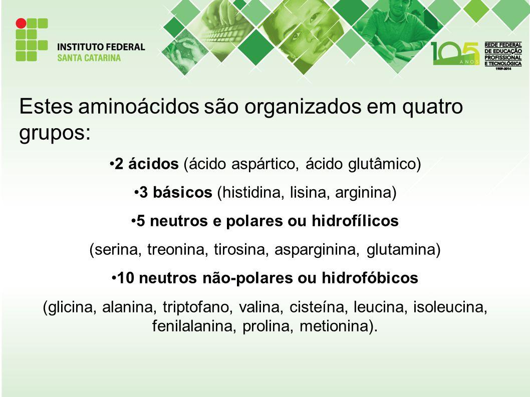 Estes aminoácidos são organizados em quatro grupos: 2 ácidos (ácido aspártico, ácido glutâmico) 3 básicos (histidina, lisina, arginina) 5 neutros e po