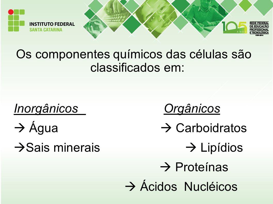 Os componentes químicos das células são classificados em: Inorgânicos Orgânicos  Água  Carboidratos  Sais minerais  Lipídios  Proteínas  Ácidos
