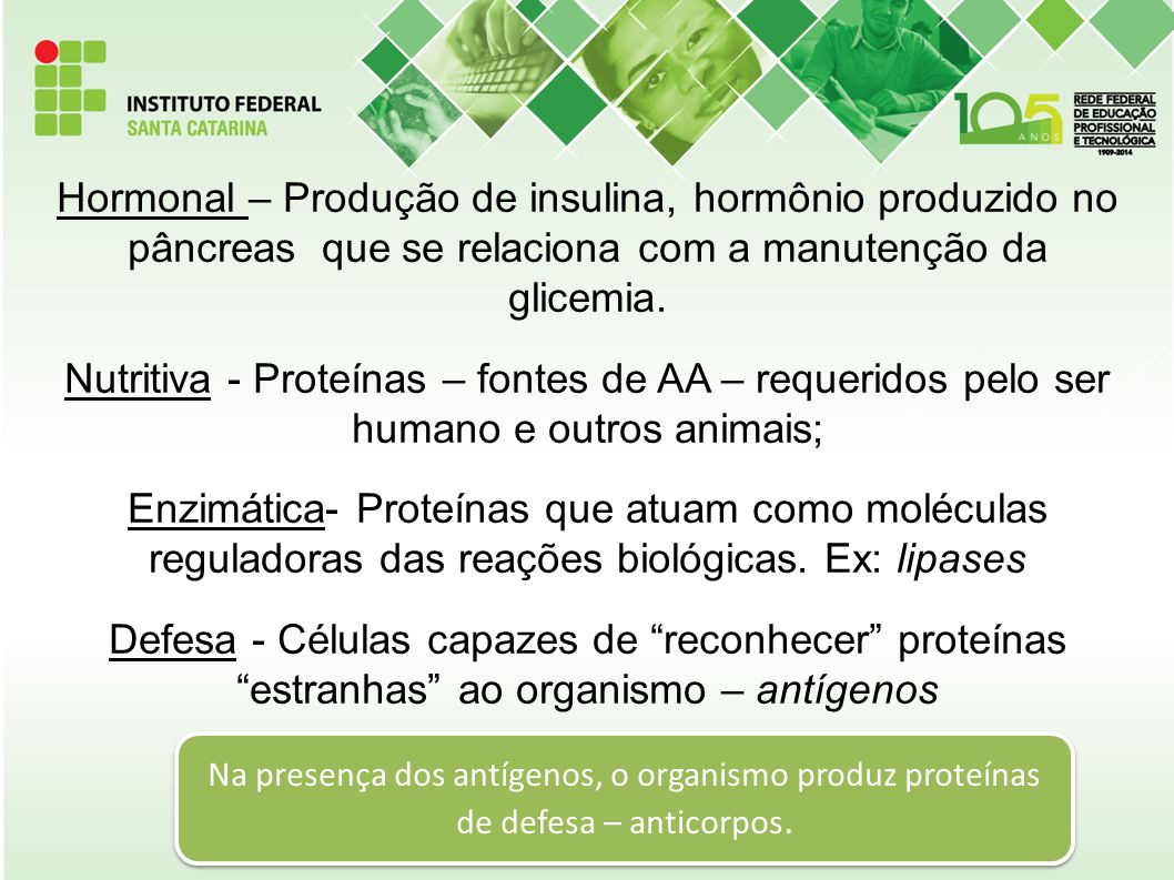 Hormonal – Produção de insulina, hormônio produzido no pâncreas que se relaciona com a manutenção da glicemia. Nutritiva - Proteínas – fontes de AA –