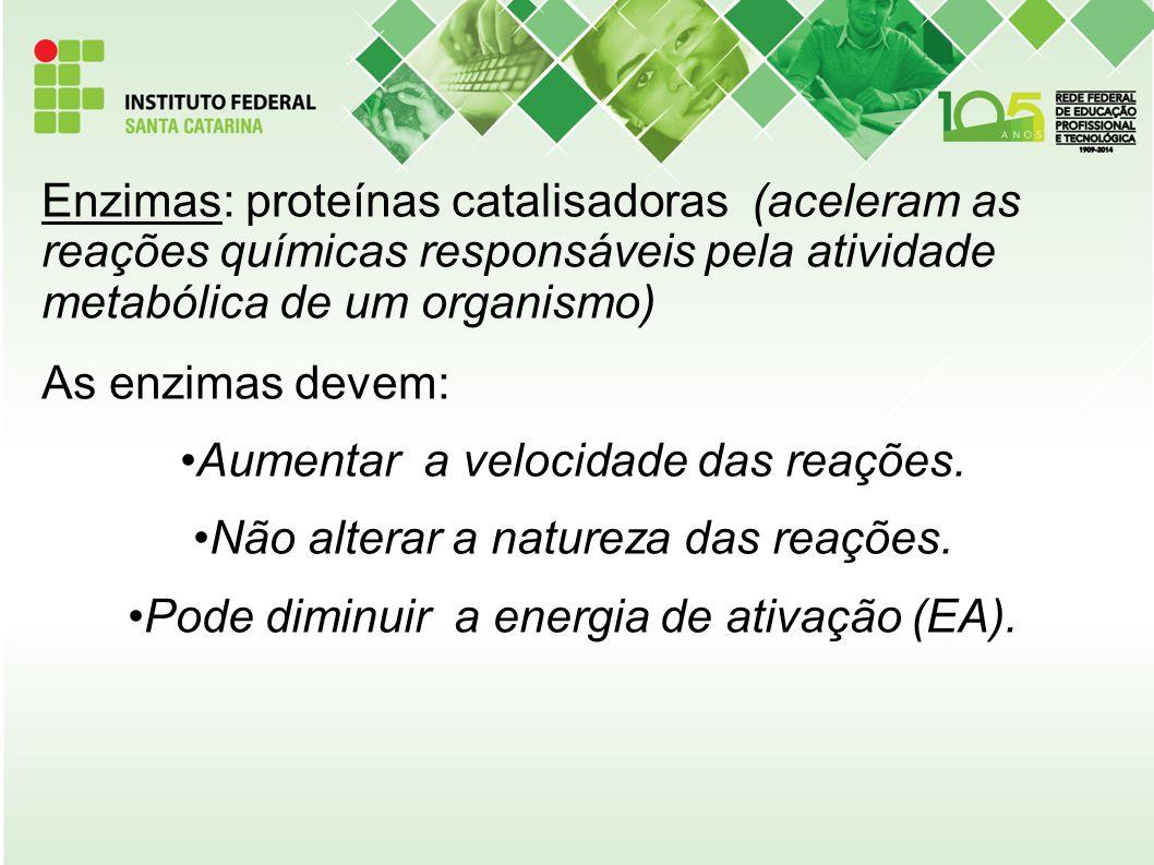 Enzimas: proteínas catalisadoras (aceleram as reações químicas responsáveis pela atividade metabólica de um organismo) As enzimas devem: Aumentar a ve
