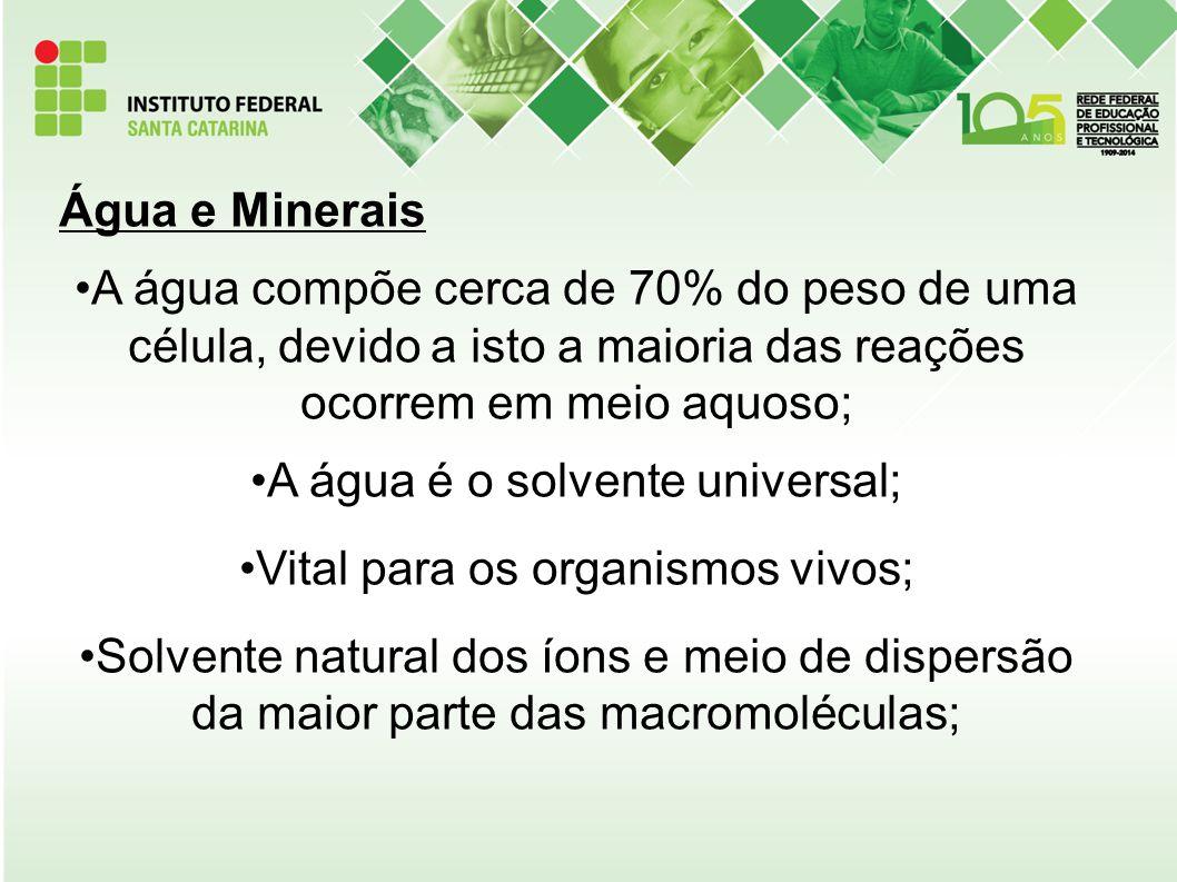 Lipídeos São moléculas orgânicas que resultam da associação entre ácidos graxos e álcool; Insolúveis em água e solúveis em solventes orgânicos (éter, álcool, benzina).