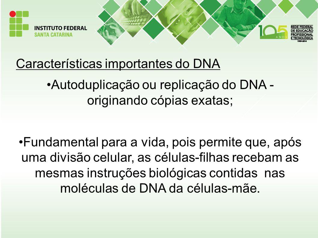 Características importantes do DNA Autoduplicação ou replicação do DNA - originando cópias exatas; Fundamental para a vida, pois permite que, após uma