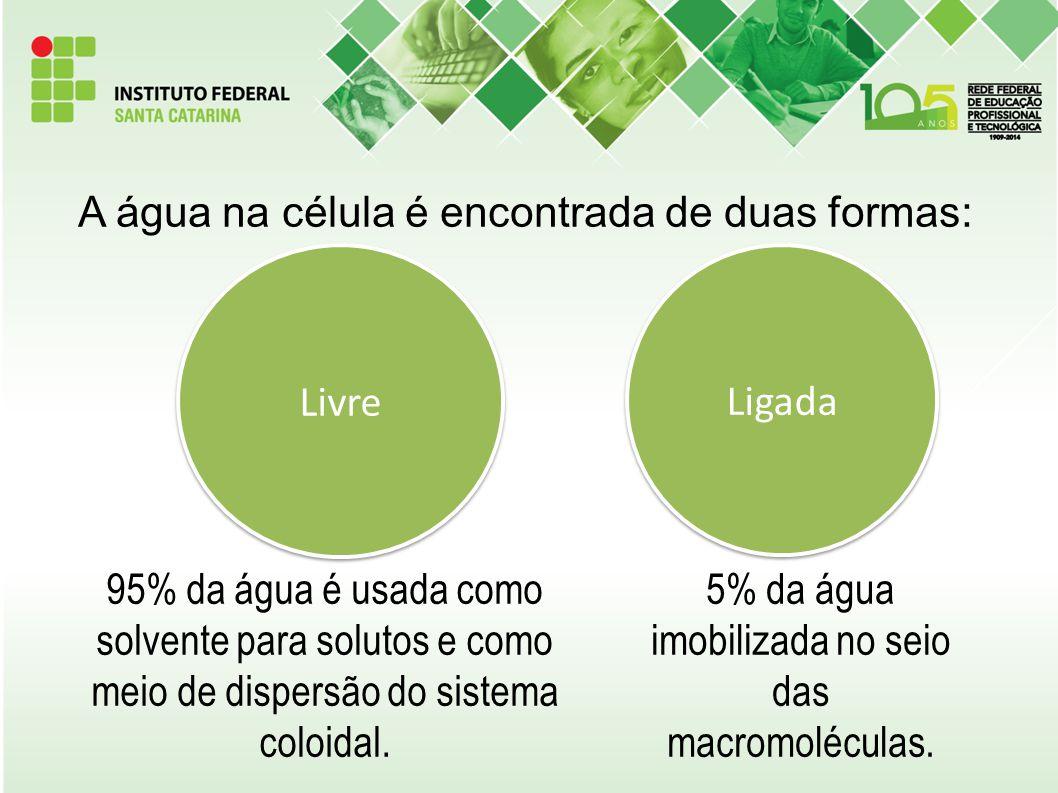 Dúvidas?? chayane.souza@ifsc.edu.br