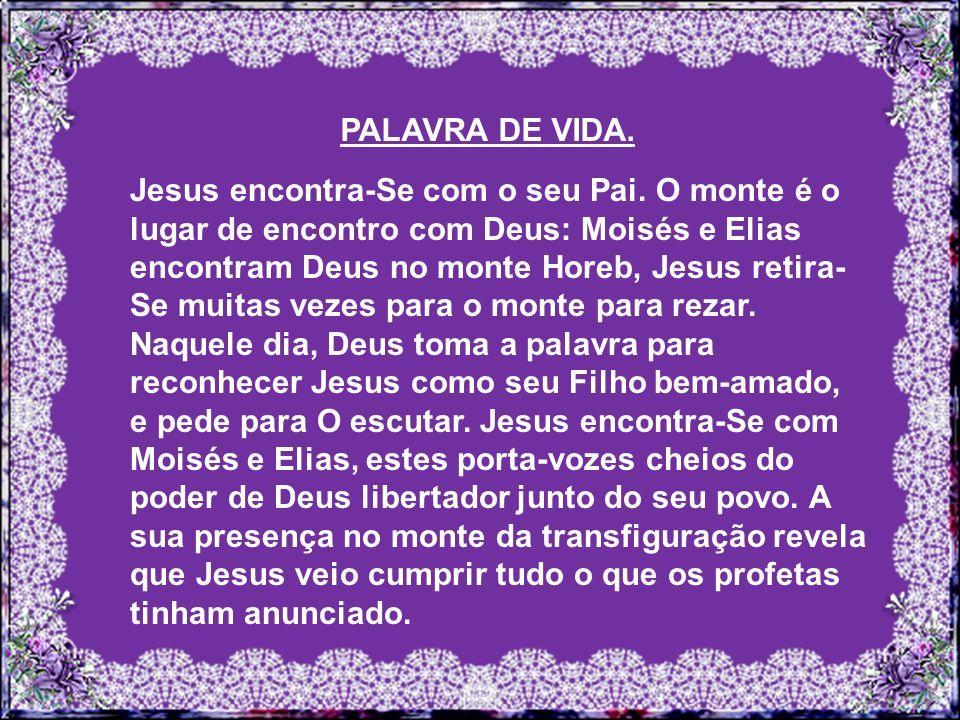 PALAVRA DE VIDA.Jesus encontra-Se com o seu Pai.