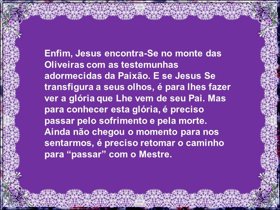 Enfim, Jesus encontra-Se no monte das Oliveiras com as testemunhas adormecidas da Paixão.