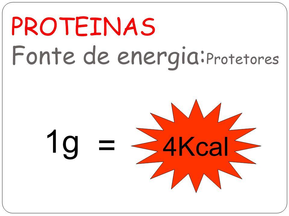 PROTEINAS Fonte de energia: Protetores 1g 4Kcal =