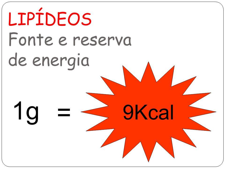 LIPÍDEOS Fonte e reserva de energia 1g 9Kcal =