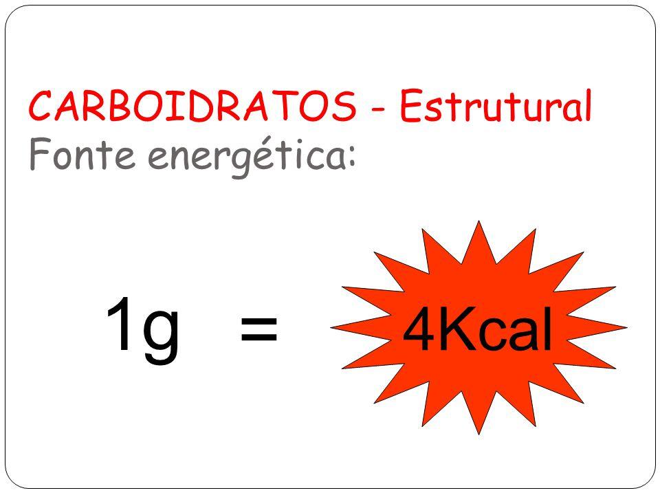CARBOIDRATOS - Estrutural Fonte energética: 1g 4Kcal =