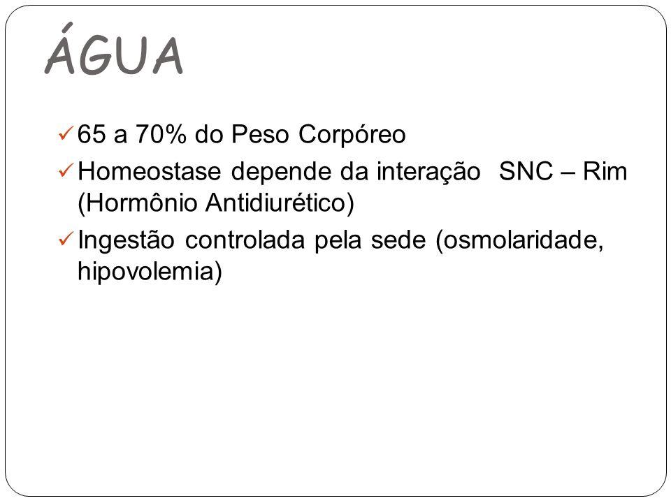 ÁGUA 65 a 70% do Peso Corpóreo Homeostase depende da interação SNC – Rim (Hormônio Antidiurético) Ingestão controlada pela sede (osmolaridade, hipovolemia)