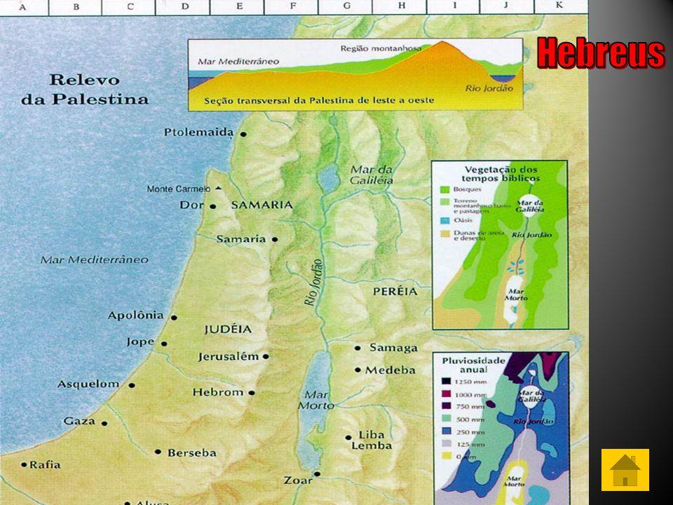 Antissemitismo – Aversão à raça Judaica Sionismo – Doutrina criada no final do Século XIX com a proposta de criação de um Lar Nacional para os Judeus na Palestina Theodor Herzl Holocausto – Matança de cerca de seis milhões de Judeus pelo Nazismo entre 1933 e 1945