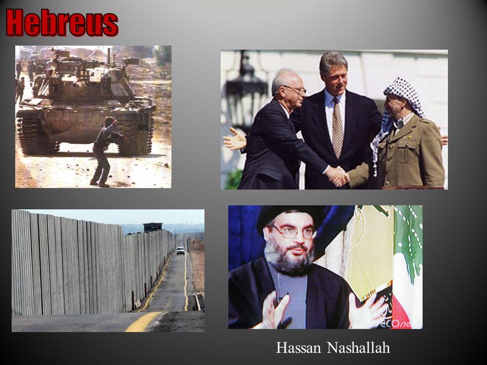 Hassan Nashallah