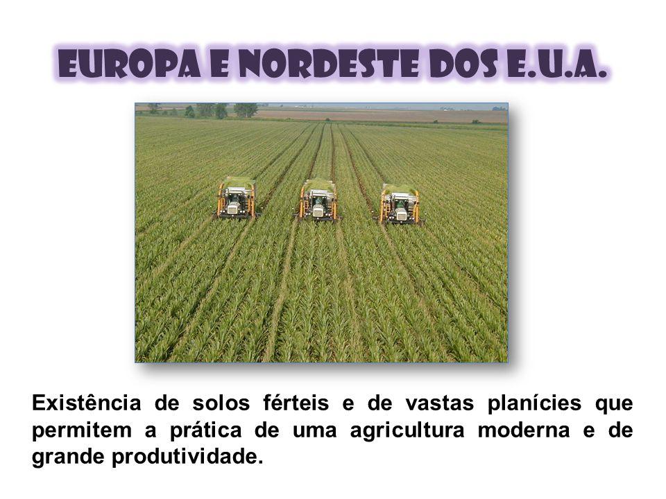 Existência de solos férteis e de vastas planícies que permitem a prática de uma agricultura moderna e de grande produtividade.