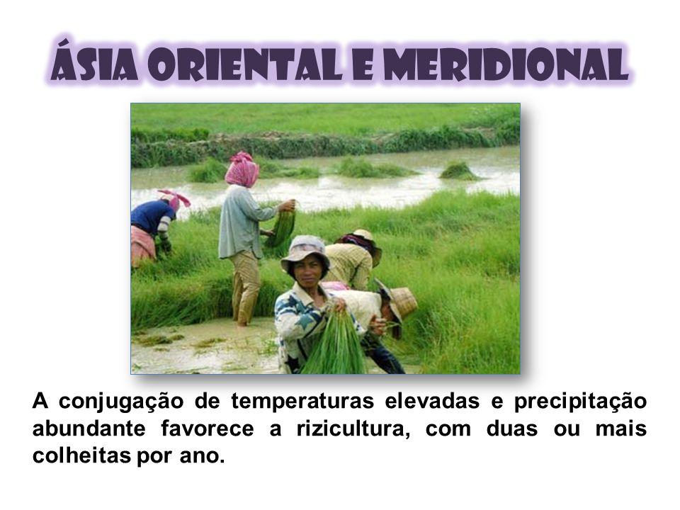 A conjugação de temperaturas elevadas e precipitação abundante favorece a rizicultura, com duas ou mais colheitas por ano.