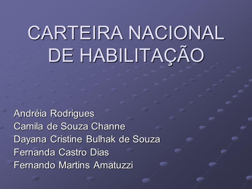 CARTEIRA NACIONAL DE HABILITAÇÃO Andréia Rodrigues Camila de Souza Channe Dayana Cristine Bulhak de Souza Fernanda Castro Dias Fernando Martins Amatuz
