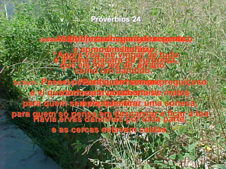 24:27- Cuide primeiro de seus negócios, defina sua situação finaneira e, depois, comece a construir sua casa e formar sua família. 24:28- Não prejudiq