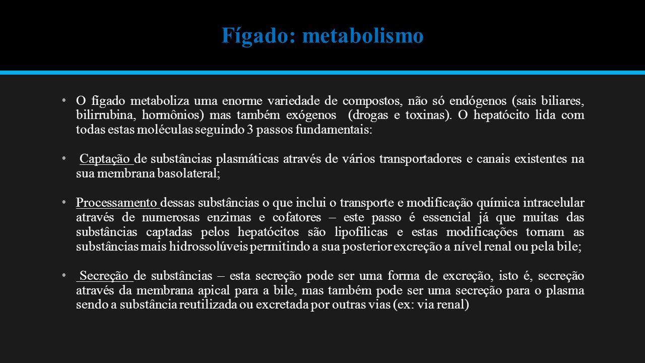 Fígado: metabolismo O fígado metaboliza uma enorme variedade de compostos, não só endógenos (sais biliares, bilirrubina, hormônios) mas também exógenos (drogas e toxinas).