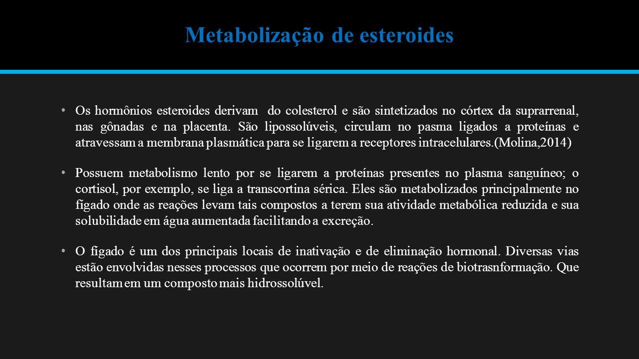 Metabolização de esteroides Os hormônios esteroides derivam do colesterol e são sintetizados no córtex da suprarrenal, nas gônadas e na placenta.