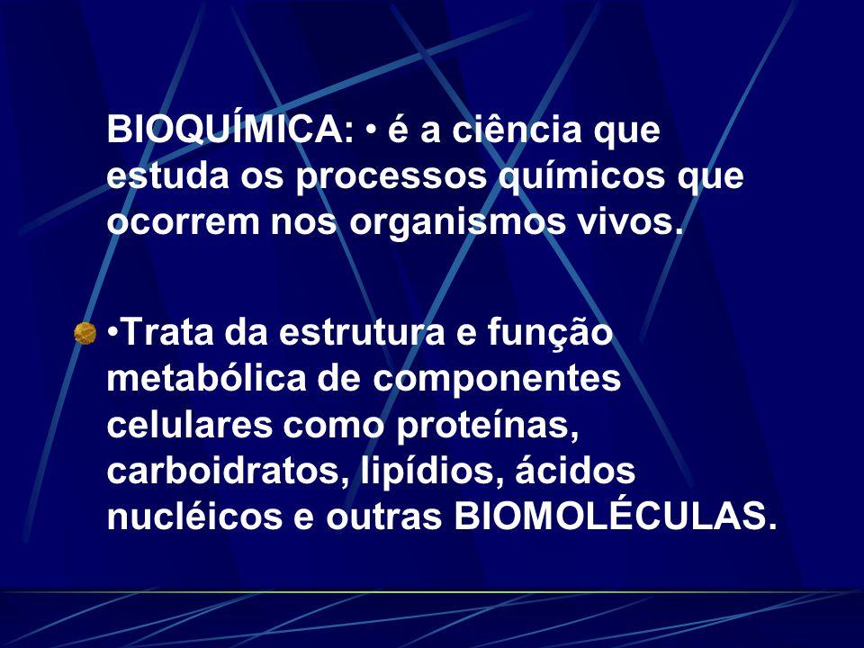 ROTINA LABORATORIAL Hemograma Glicemia e eletrólitos Função renal Hepatograma Lipidograma Rotinas hormonais Eletroforese de Hb