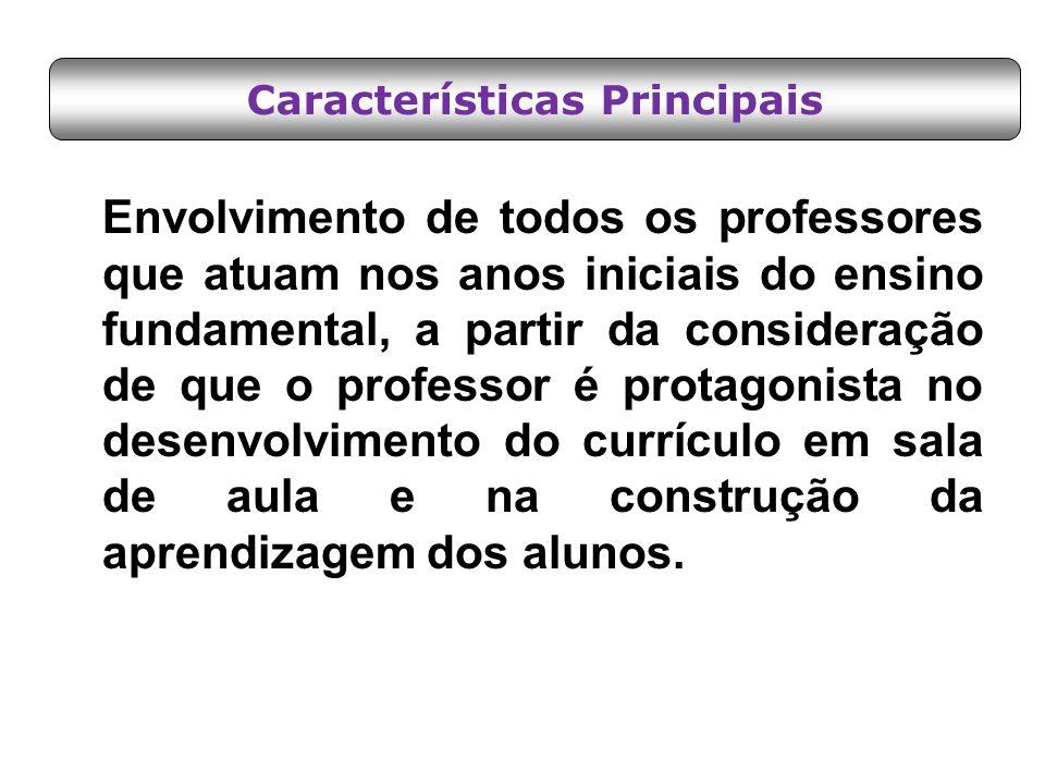 Envolvimento de todos os professores que atuam nos anos iniciais do ensino fundamental, a partir da consideração de que o professor é protagonista no