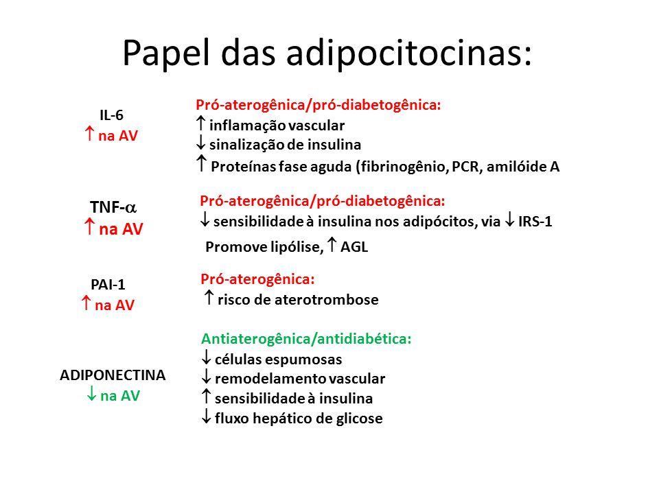 IL-6  na AV Pró-aterogênica/pró-diabetogênica:  inflamação vascular  sinalização de insulina  Proteínas fase aguda (fibrinogênio, PCR, amilóide A