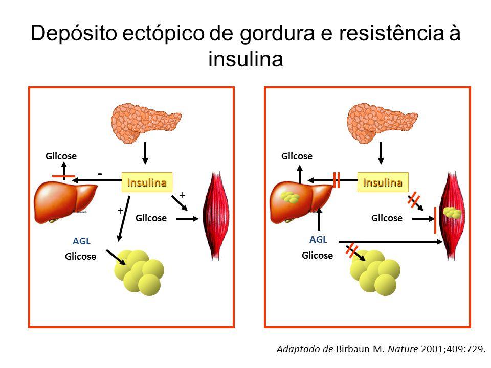 Depósito ectópico de gordura e resistência à insulina Adaptado de Birbaun M. Nature 2001;409:729. Insulina Glicose - + + Insulina AGL Glicose AGL