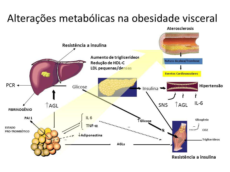  Adiponectina IL 6 TNF-  PAI 1 Hipertensão FIBRINOGÊNIO ESTADO PRO-TROMBÓTICO Rutura da placa/Trombose Eventos Cardiovasculares Aterosclerosis Alter