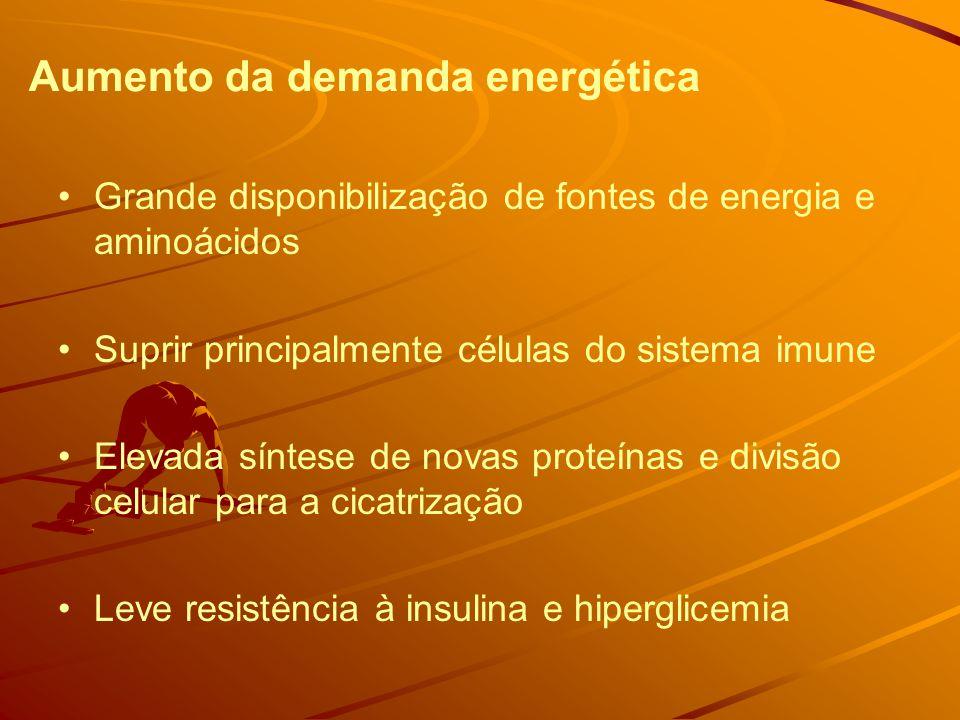Aumento da demanda energética Grande disponibilização de fontes de energia e aminoácidos Suprir principalmente células do sistema imune Elevada síntese de novas proteínas e divisão celular para a cicatrização Leve resistência à insulina e hiperglicemia