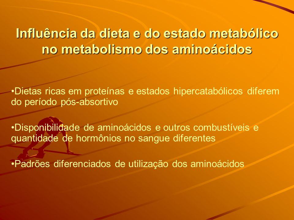 Influência da dieta e do estado metabólico no metabolismo dos aminoácidos Dietas ricas em proteínas e estados hipercatabólicos diferem do período pós-absortivo Disponibilidade de aminoácidos e outros combustíveis e quantidade de hormônios no sangue diferentes Padrões diferenciados de utilização dos aminoácidos