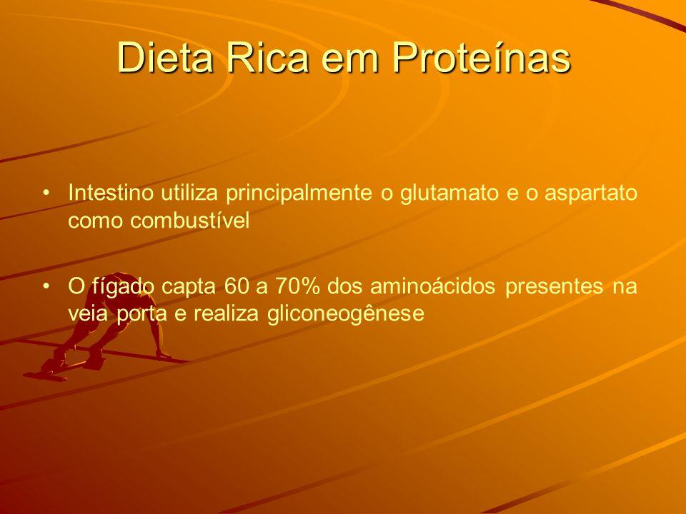 Dieta Rica em Proteínas Intestino utiliza principalmente o glutamato e o aspartato como combustível O fígado capta 60 a 70% dos aminoácidos presentes na veia porta e realiza gliconeogênese
