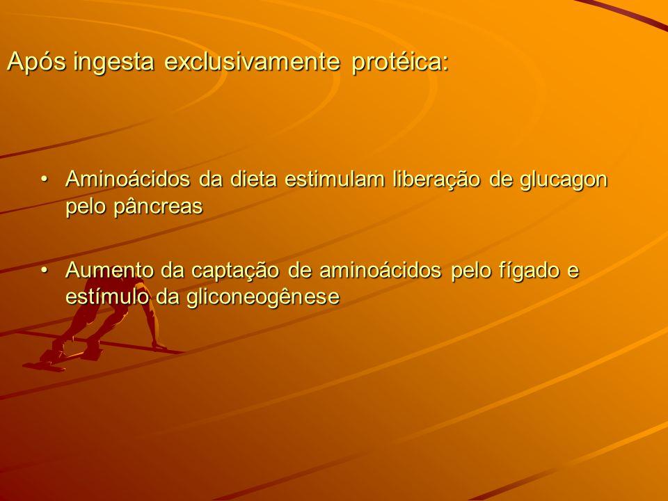 Após ingesta exclusivamente protéica: Aminoácidos da dieta estimulam liberação de glucagon pelo pâncreasAminoácidos da dieta estimulam liberação de glucagon pelo pâncreas Aumento da captação de aminoácidos pelo fígado e estímulo da gliconeogêneseAumento da captação de aminoácidos pelo fígado e estímulo da gliconeogênese