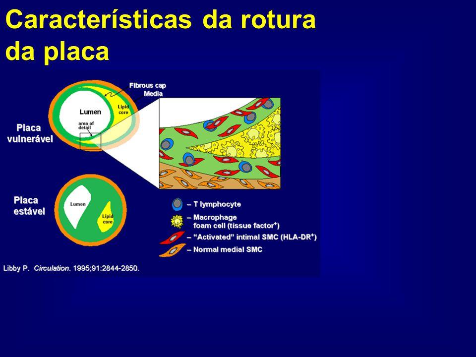 Características da rotura da placa
