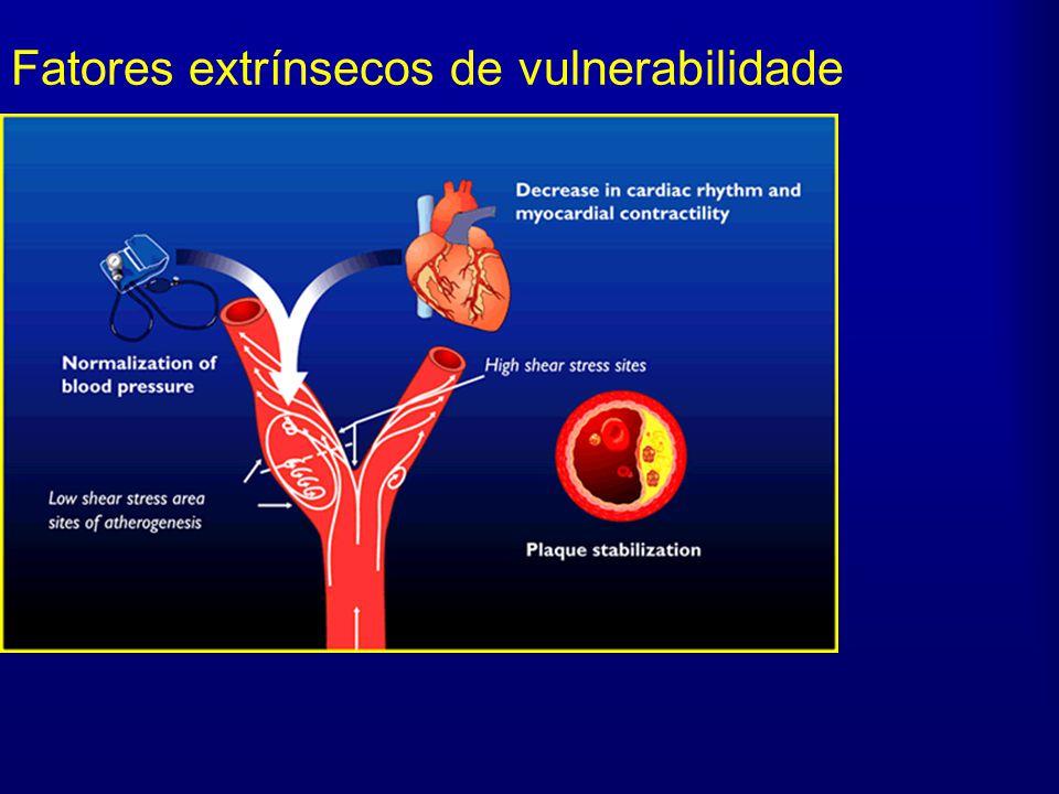 Fatores extrínsecos de vulnerabilidade