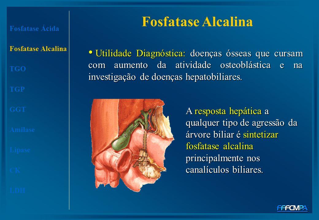Fosfatase Alcalina Fosfatase Ácida Fosfatase Alcalina TGO TGP GGT Amilase Lipase CK LDH Utilidade Diagnóstica: doenças ósseas que cursam com aumento d