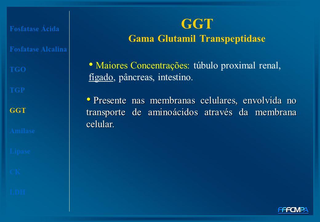 GGT Gama Glutamil Transpeptidase Presente nas membranas celulares, envolvida no transporte de aminoácidos através da membrana celular. Presente nas me
