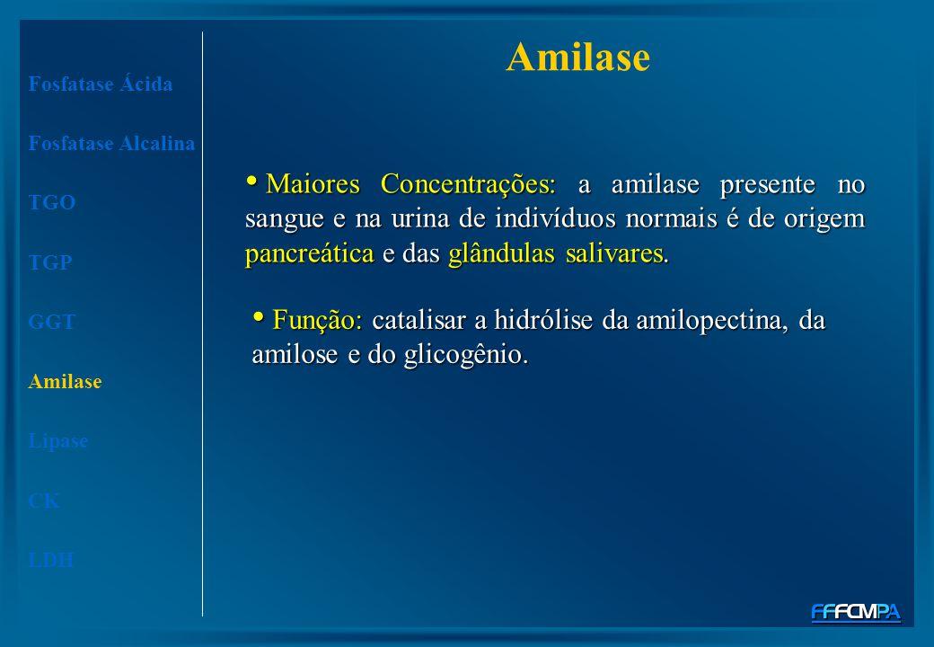 Amilase Maiores Concentrações: a amilase presente no sangue e na urina de indivíduos normais é de origem pancreática e das glândulas salivares. Maiore