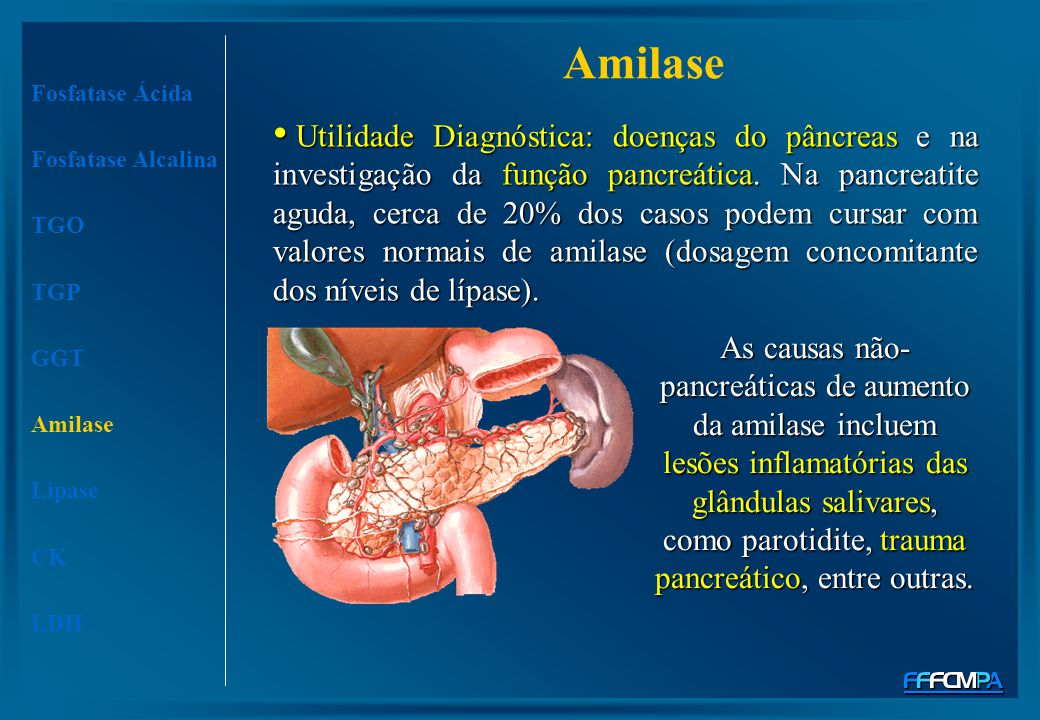 Amilase Fosfatase Ácida Fosfatase Alcalina TGO TGP GGT Amilase Lipase CK LDH Utilidade Diagnóstica: doenças do pâncreas e na investigação da função pa