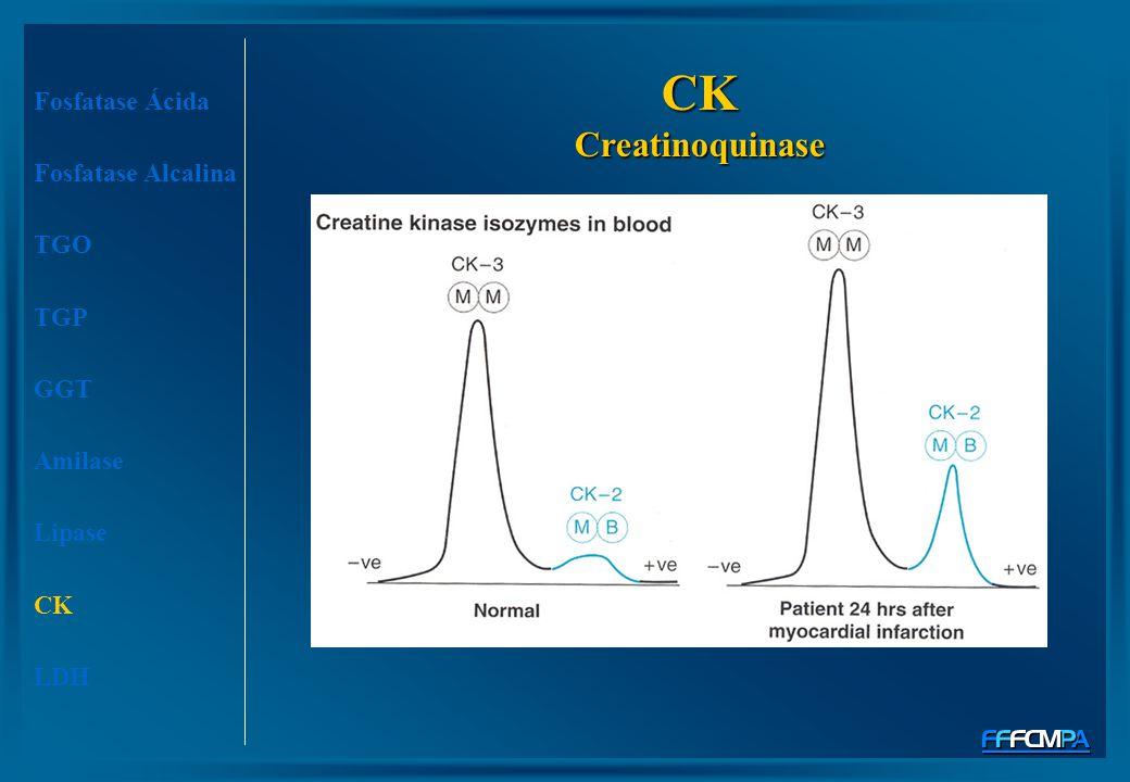 Fosfatase Ácida Fosfatase Alcalina TGO TGP GGT Amilase Lipase CK LDH CK Creatinoquinase