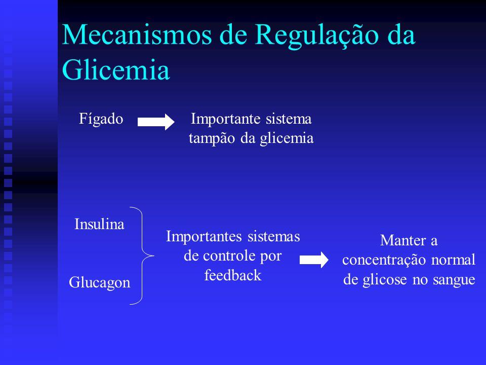 Mecanismos de Ação da Insulina Insulina: Insulina:  Produzida pelas células beta das ilhotas de Langerhans  Compreende cerca de 1% da massa celular do pâncreas  Um dos mais importantes hormônios que coordenam a utilização de combustíveis pelos tecidos  Efeitos metabólicos anabólicos síntese de glicogênio, triacilgliceróis e proteínas  Efeito sobre o metabolismo da glicose:  Fígado inibe a gliconeogênese e glicogenólise  Fígado e músculo aumenta a glicogênese