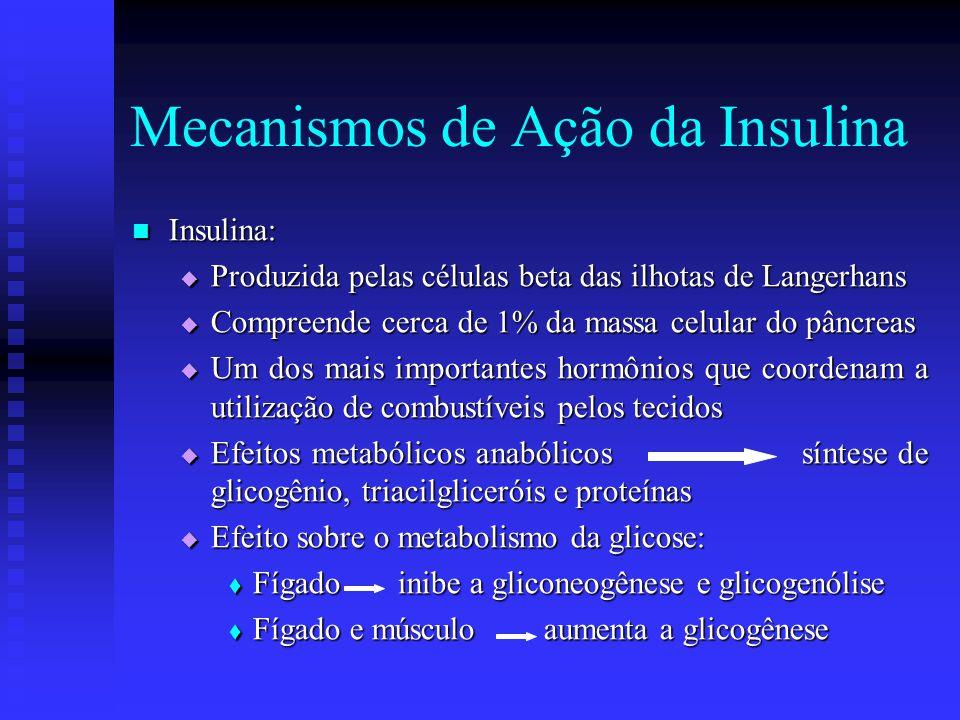  Músculo e tecido adiposo aumenta o número de transportadores de glicose na membrana celular aumenta a captação de glicose