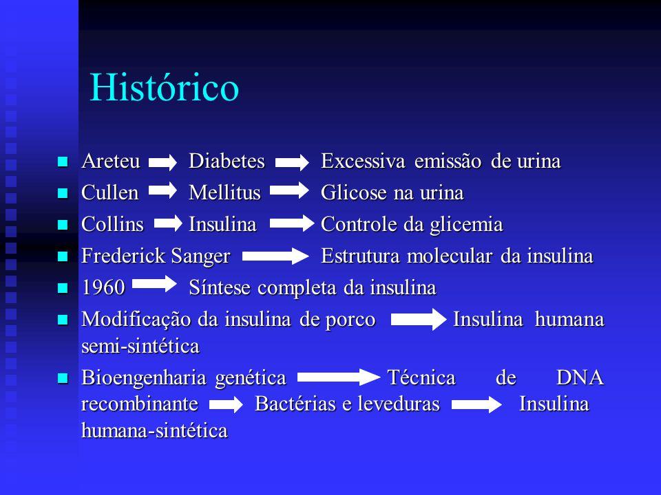 Diabete melito tipo II Secundária à obesidade Menor número de receptores de insulina Anormalidades das vias de sinalização Pessoas Obesas Resistência à insulina