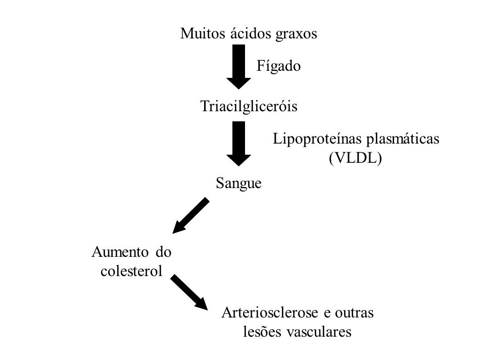Muitos ácidos graxos Fígado Triacilgliceróis Lipoproteínas plasmáticas (VLDL) Sangue Aumento do colesterol Arteriosclerose e outras lesões vasculares