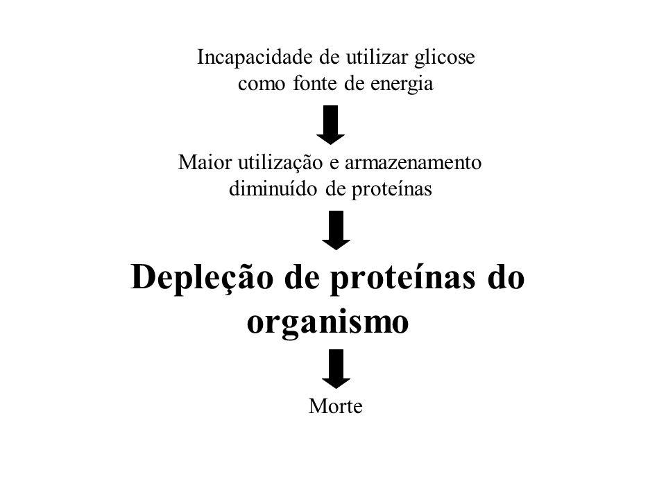 Depleção de proteínas do organismo Incapacidade de utilizar glicose como fonte de energia Maior utilização e armazenamento diminuído de proteínas Mort